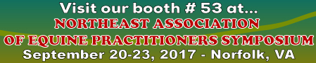 NEAEP2017 Banner Ad (449x90)